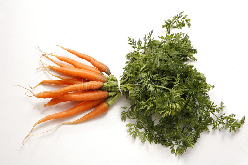 Manojo joven fresco de zanahorias imagen de archivo