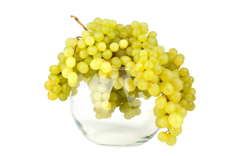 Manojos de uvas verdes en el florero redondo de cristal en el fondo blanco del espejo con descensos de la reflexión y del agua ai fotos de archivo