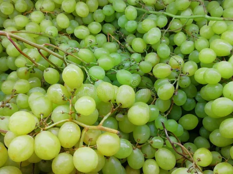 Manojos de uvas verdes Uvas verdes jugosas Textura con las uvas fotografía de archivo