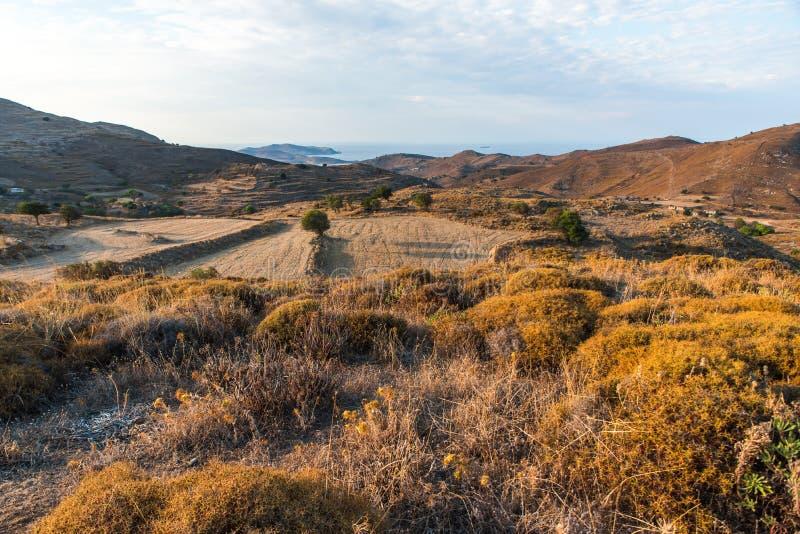 Manojos del campo y del tomillo en el campo montañoso, Limnos foto de archivo