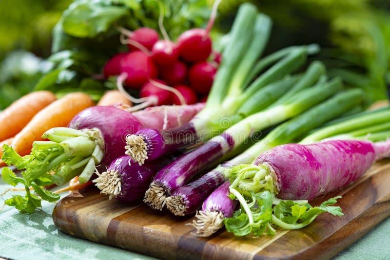 Manojos del r?bano peque?o y largo rojo fresco, de las zanahorias y de la cebolla p?rpura, nueva cosecha de verduras sanas foto de archivo