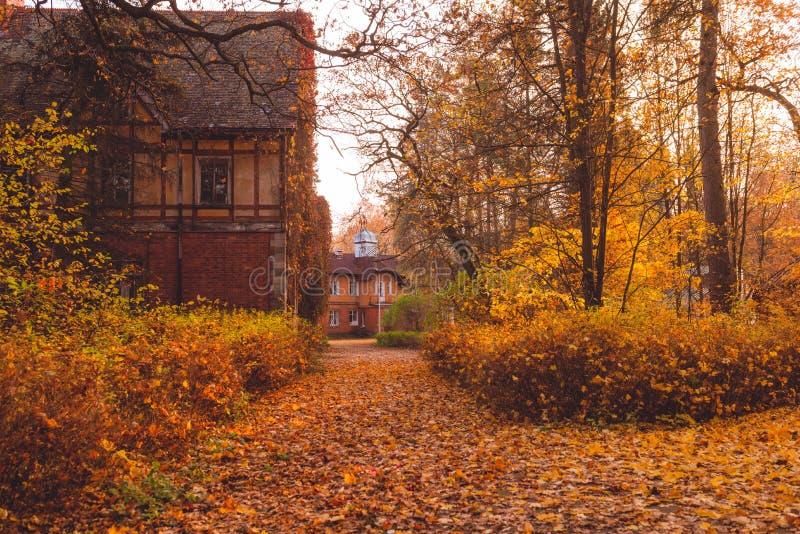 Manor met bomen in de herfstkleuren en dalingsbomen Oud Victoriaans Spookhuis met spoken Verlaten huis in de herfsthout royalty-vrije stock foto's
