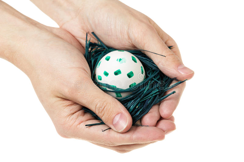 Manos adultas del hombre que sostienen la jerarquía con el huevo imagen de archivo libre de regalías