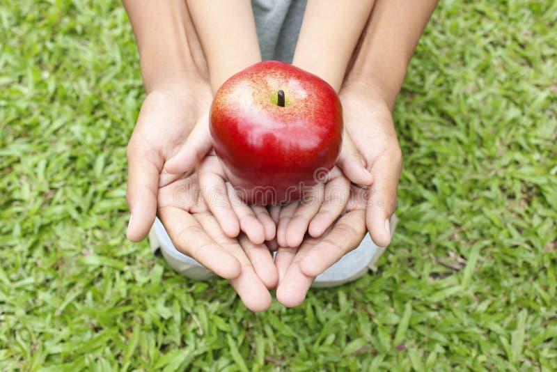 Manos adultas que llevan a cabo las manos del niño con la manzana roja imágenes de archivo libres de regalías