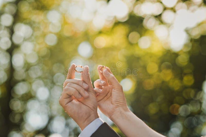 Manos con los anillos de bodas 1622 foto de archivo libre de regalías
