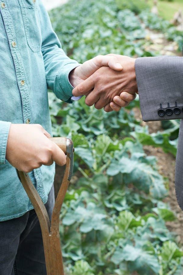 Manos de And Businessman Shaking del granjero imagen de archivo