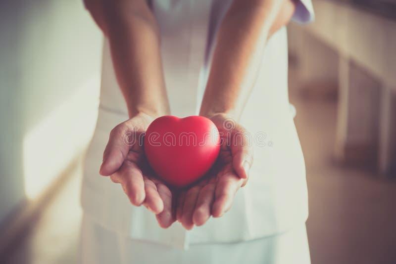 Manos de la enfermera que llevan a cabo el corazón rojo fotografía de archivo libre de regalías