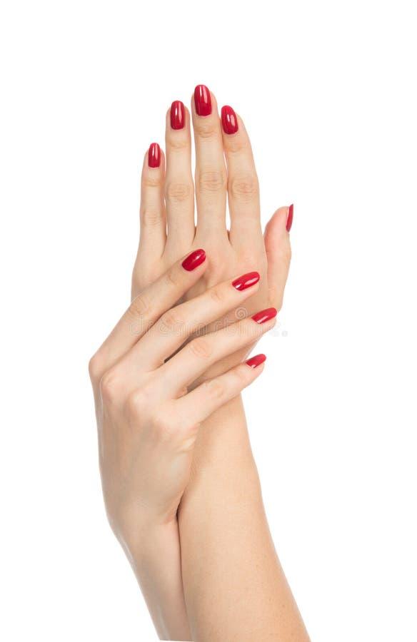 Manos de la mujer con los clavos rojos manicured fotografía de archivo
