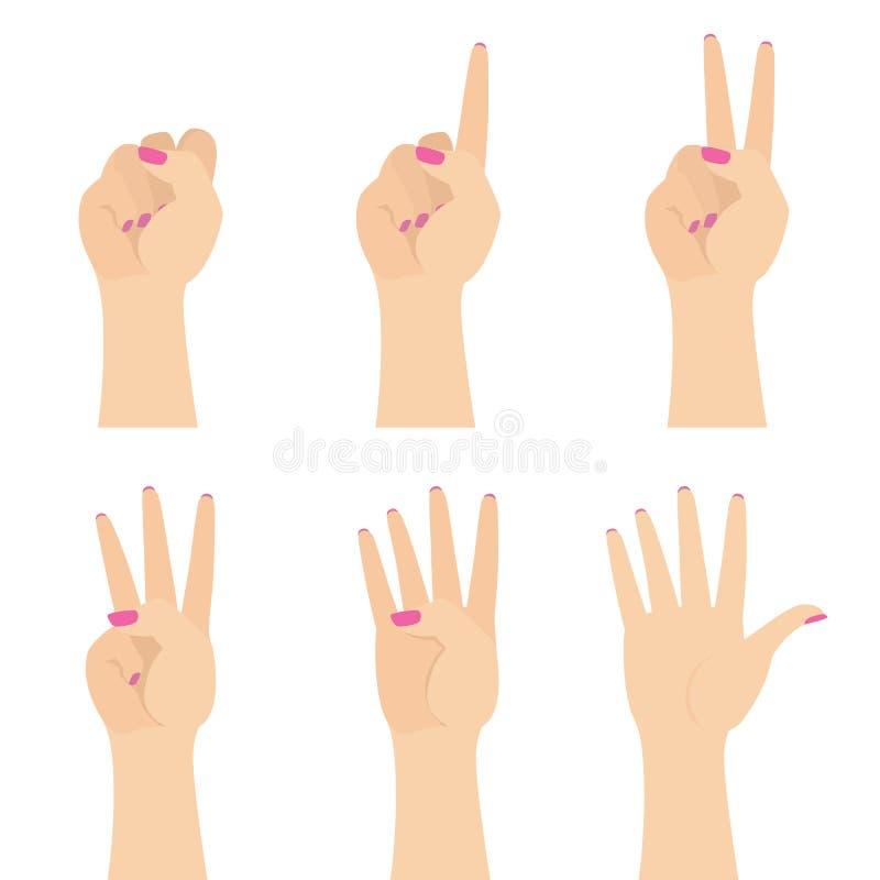 Manos de la mujer elegante que cuentan al sistema plano del ejemplo del vector cinco aislado en blanco stock de ilustración
