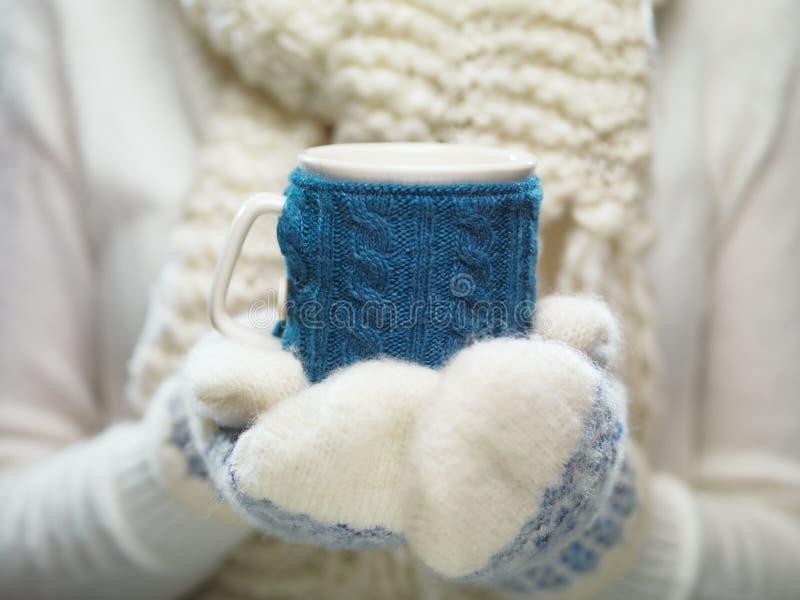 Manos de la mujer en las manoplas blancas y azules que sostienen una taza hecha punto acogedora con cacao, té o café caliente Con imágenes de archivo libres de regalías