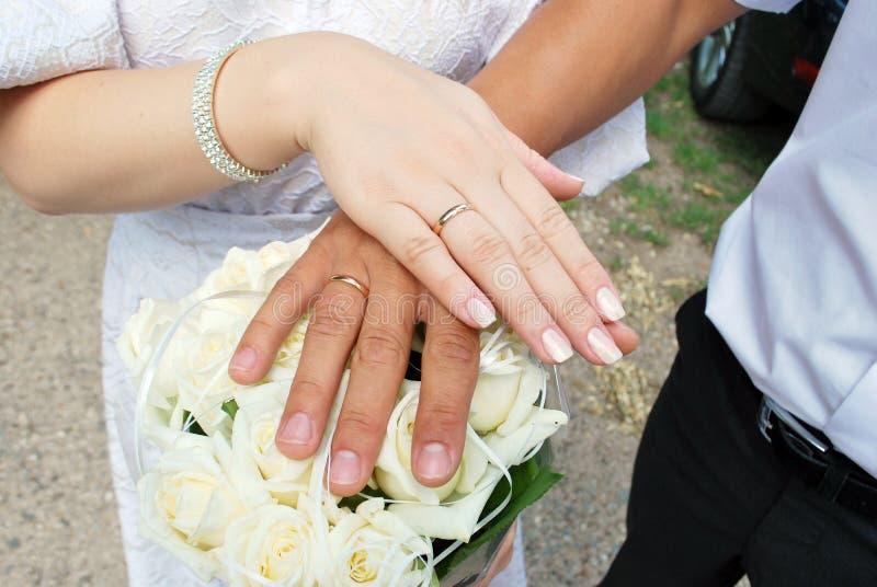 Manos de la novia y del novio imagen de archivo libre de regalías