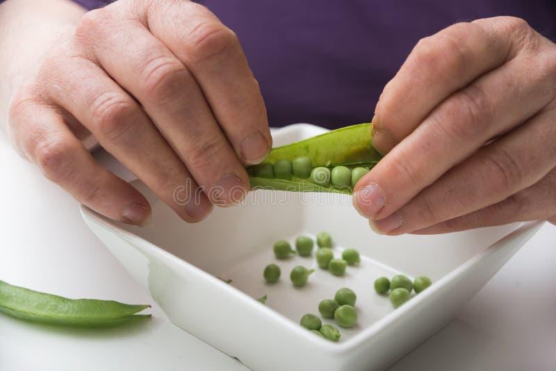 manos de mujer pelando arvejas orgánicas frescas sobre fondo blanco de mesa imagen de archivo