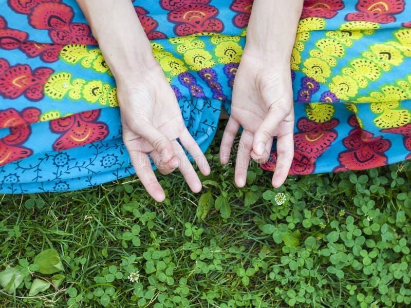 Manos de una chica joven foto de archivo libre de regalías