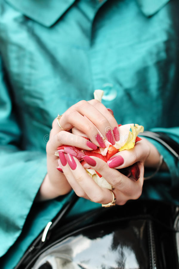 Manos de una mujer por completo de pétalos color de rosa fotos de archivo libres de regalías