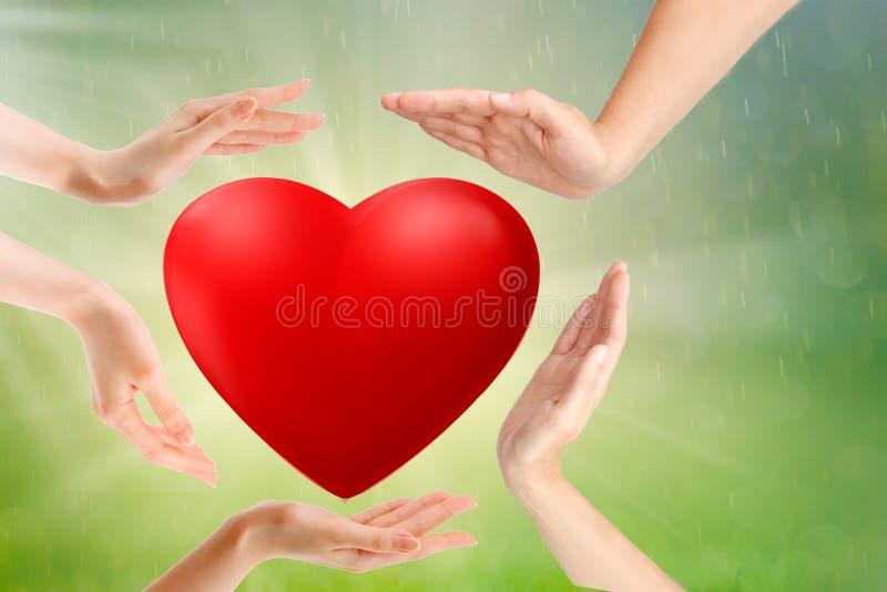 Manos del adulto y del niño que llevan a cabo el corazón, la atención sanitaria, el amor y el concepto rojos del seguro de la fam imagenes de archivo