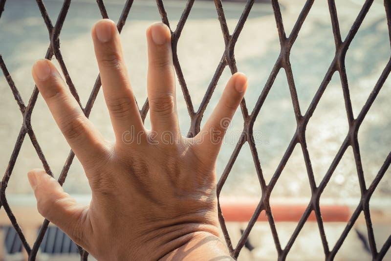 Manos del hombre en un cierre de acero del enrejado para arriba fotos de archivo