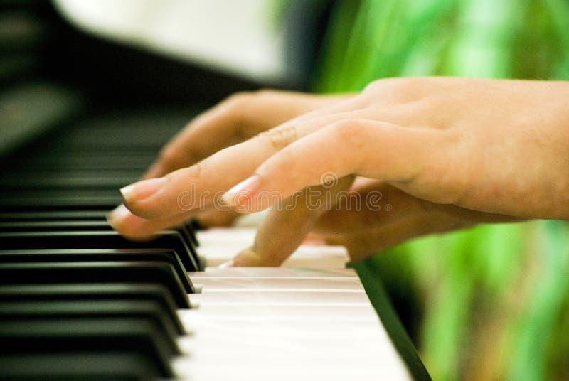 Manos del piano   imagenes de archivo