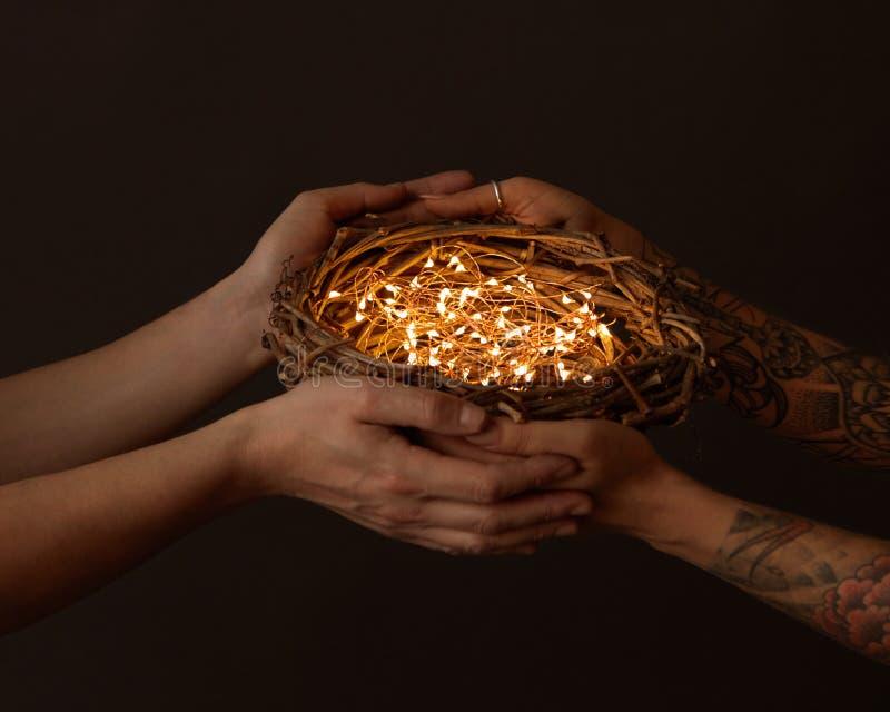 Manos del ` s de las manos y de las mujeres del ` s de los hombres con un tatuaje que celebra una jerarquía de ramas con las guir imagen de archivo