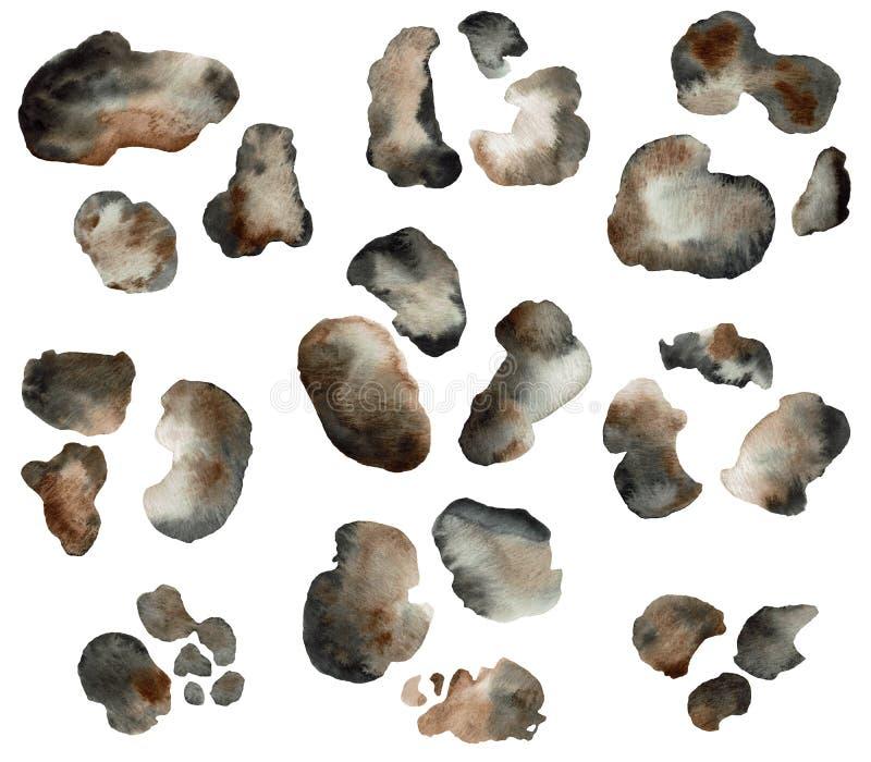 Manos dibujadas color agua leopardo de piel manchas de imitación manchas ilustración del vector