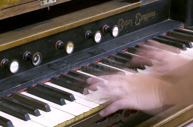 Manos en el teclado del órgano fotografía de archivo