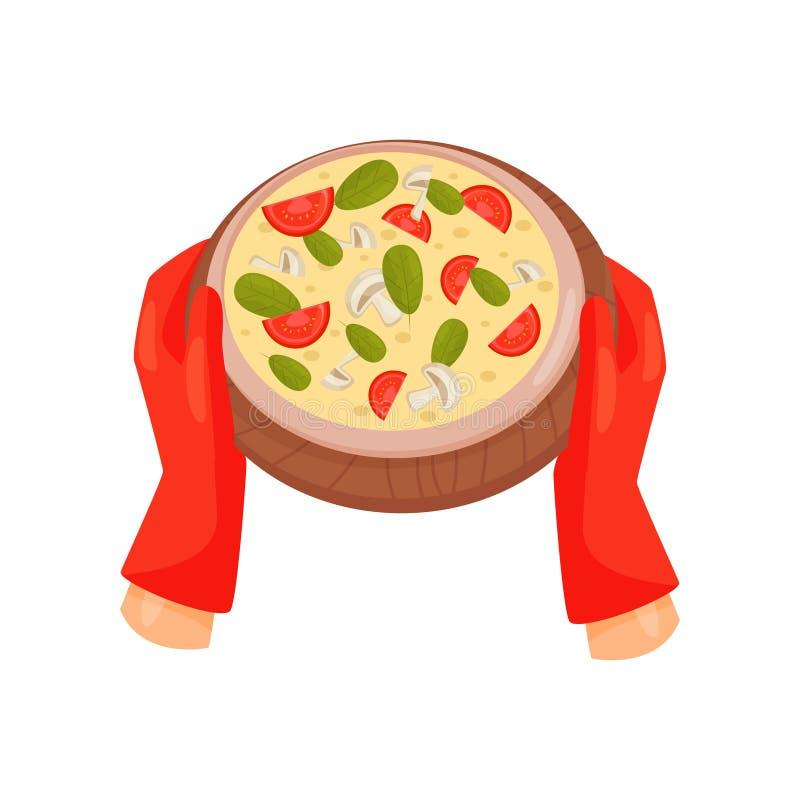 Manos en los guantes a prueba de calor que sostienen la pizza recién preparada con el tomate, las setas y el ejemplo del vector d stock de ilustración