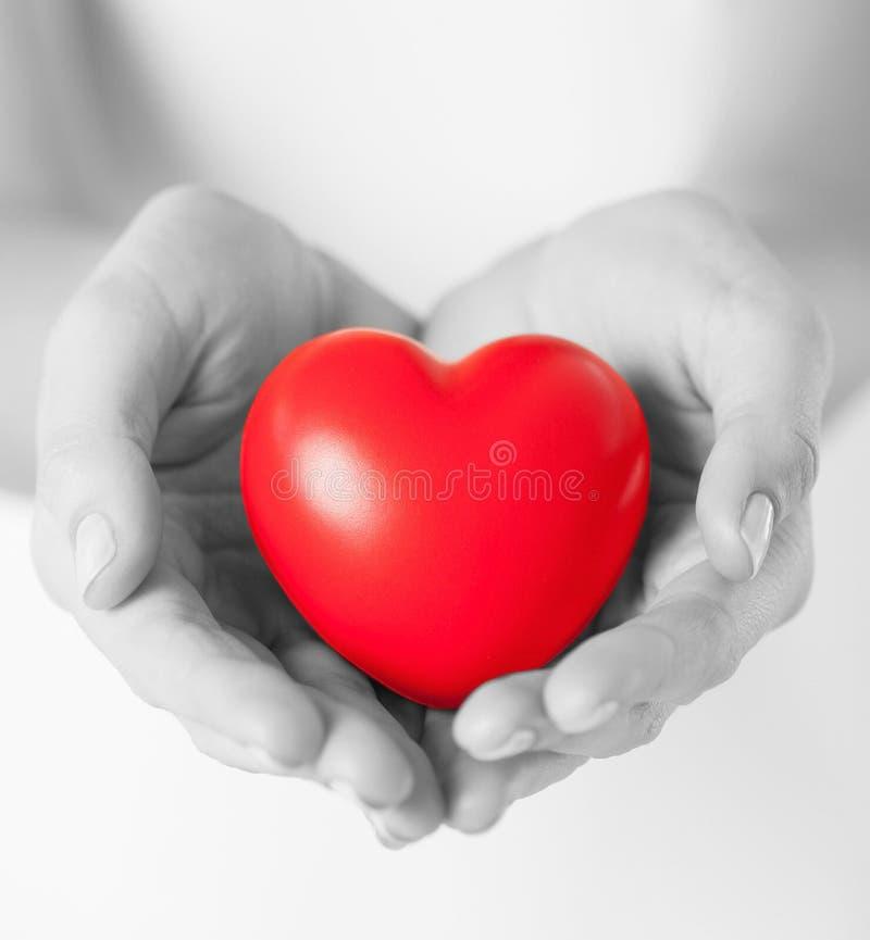 Manos femeninas con el pequeño corazón rojo imagen de archivo