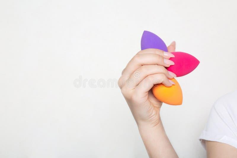 Manos femeninas con la manicura hermosa que se considera púrpura, el rosa y las esponjas cosméticas anaranjadas Espacio vacío imagen de archivo libre de regalías