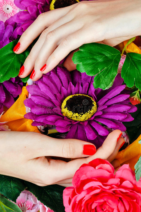 Manos femeninas con las flores foto de archivo libre de regalías