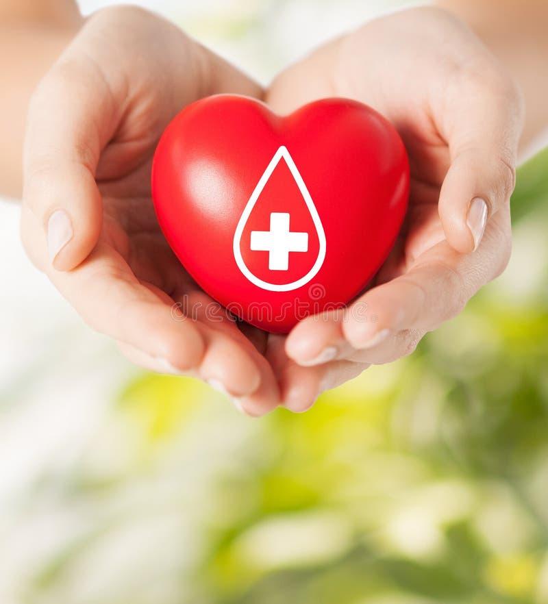 Manos femeninas que llevan a cabo el corazón rojo con la muestra dispensadora de aceite fotografía de archivo