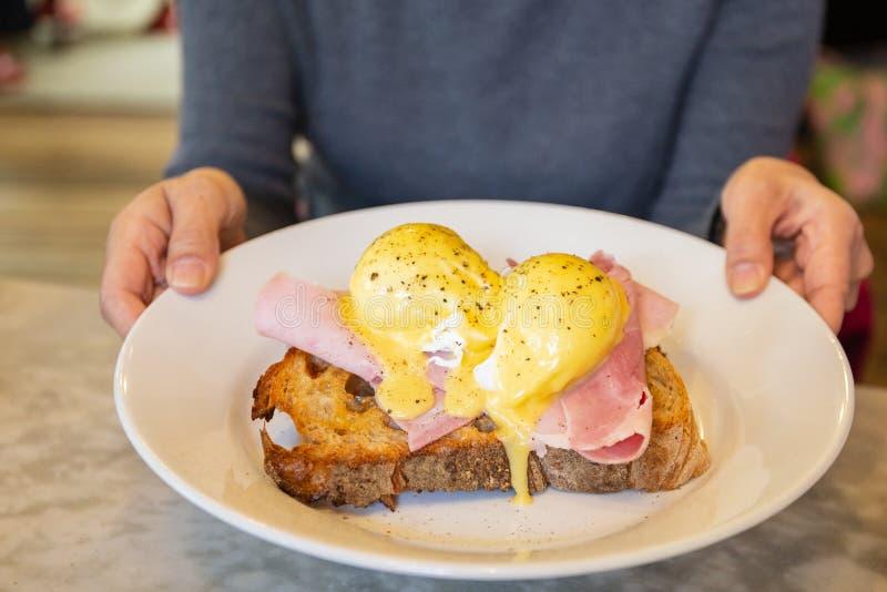 Manos femeninas que sostienen la placa con el huevo Benedicto, comida del desayuno imagen de archivo