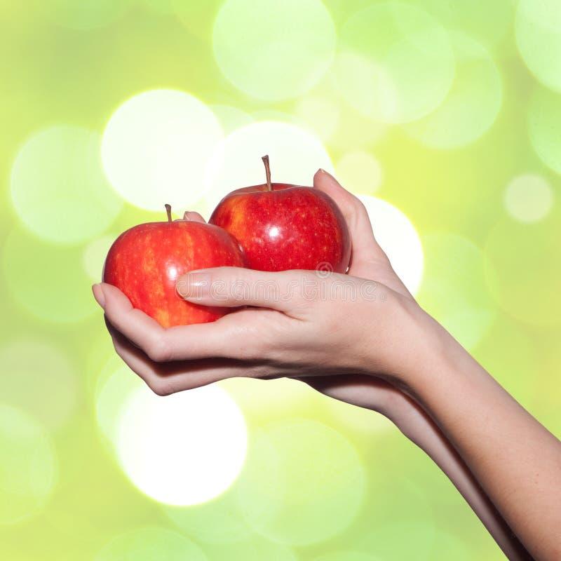 Manos femeninas que sostienen manzanas fotos de archivo