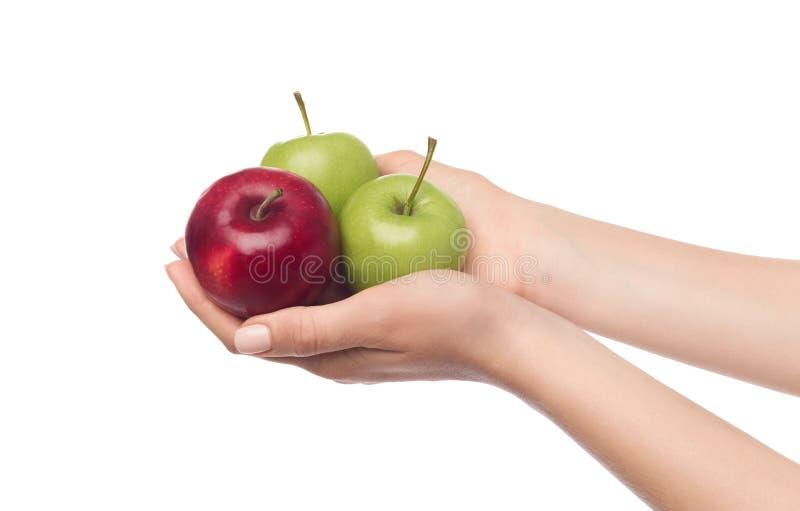 Manos femeninas que sostienen tres manzanas dulces jugosas fotografía de archivo libre de regalías