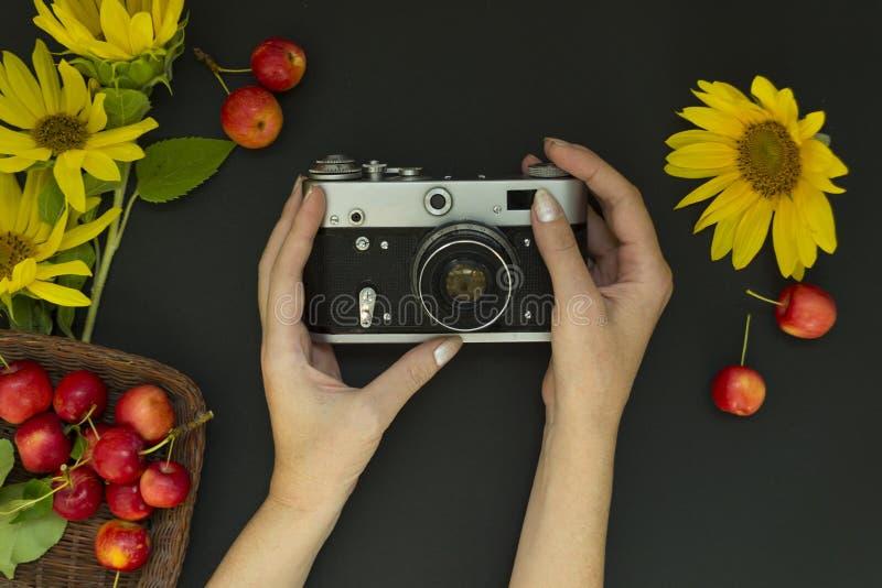 Manos femeninas que sostienen una cámara de la película en un fondo negro Cerca están las flores amarillas de girasoles y de manz imagen de archivo libre de regalías