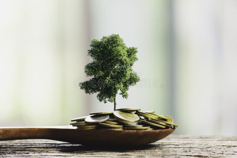 Manos humanas que sostienen la pequeña planta verde con las monedas para el concepto del negocio y de la ecología imagen de archivo libre de regalías