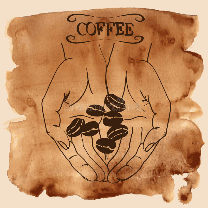 Manos humanas que sostienen los granos de café libre illustration