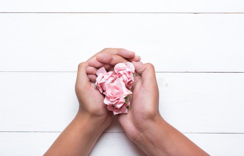 Manos jovenes que sostienen rosas rosadas sobre la tabla de madera blanca foto de archivo
