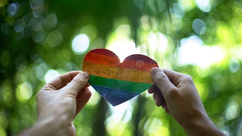 Manos masculinas que llevan a cabo el corazón del arco iris, reconocimiento global del matrimonio homosexual imagenes de archivo