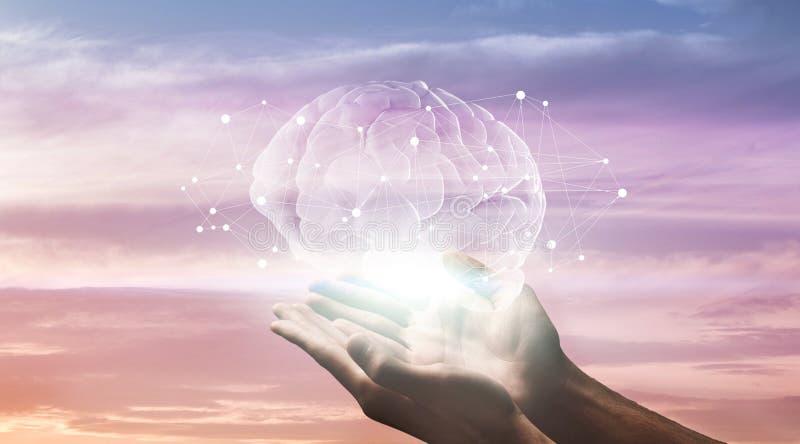 Manos masculinas que llevan a cabo el holograma del cerebro humano con las conexiones de red imagen de archivo