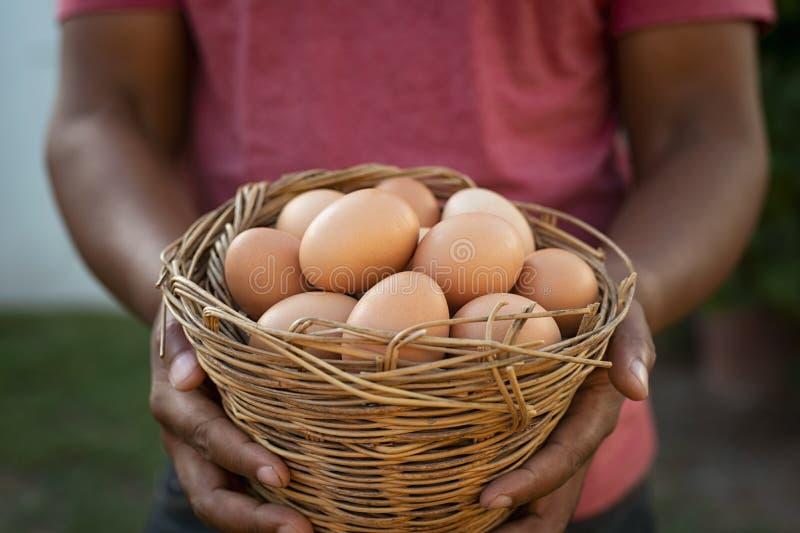 Manos negras que sostienen la cesta de huevos imagenes de archivo