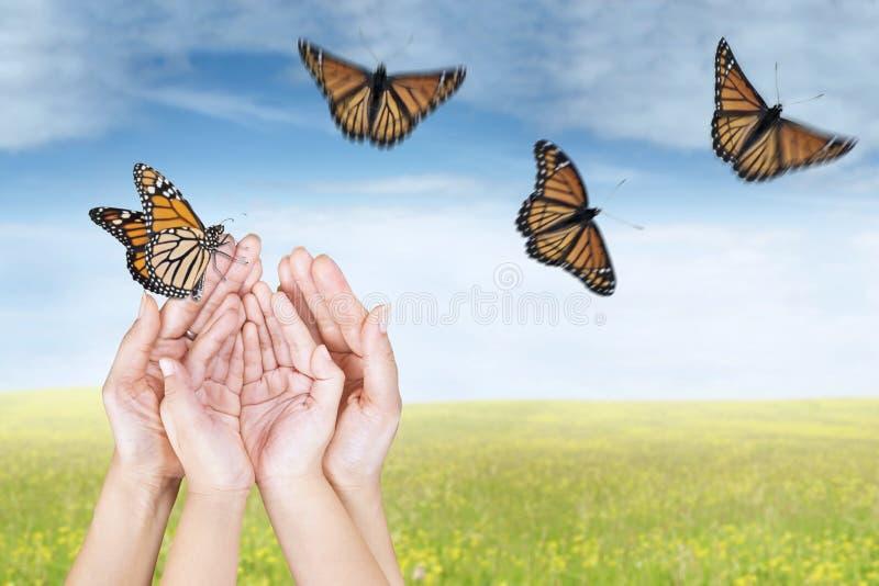 Manos que lanzan mariposas en prado fotos de archivo libres de regalías