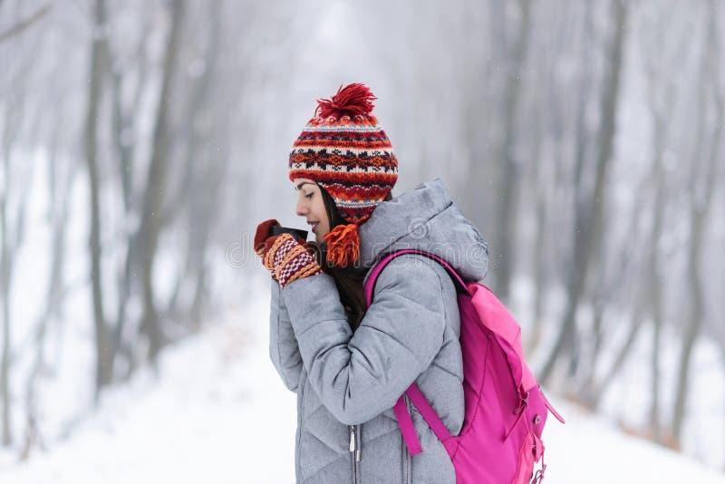 Manos que se calientan de la muchacha en un termo en el bosque Nevado del invierno fotos de archivo