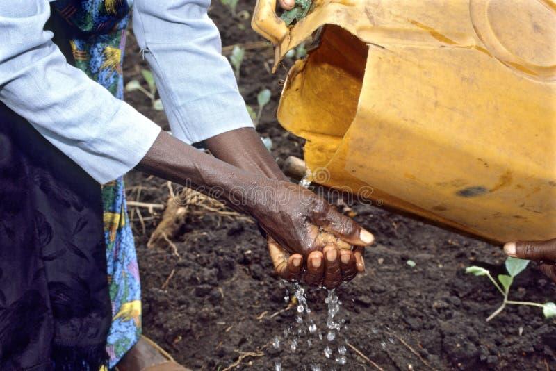 Manos que se lavan con agua escasa, Uganda fotos de archivo