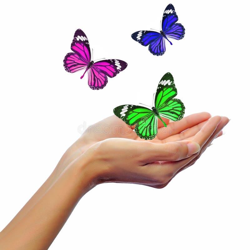 Manos release/versión mariposas imagen de archivo libre de regalías