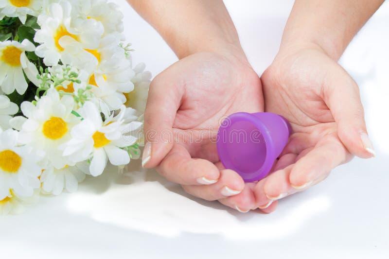Manos, taza menstrual y flores fotografía de archivo libre de regalías