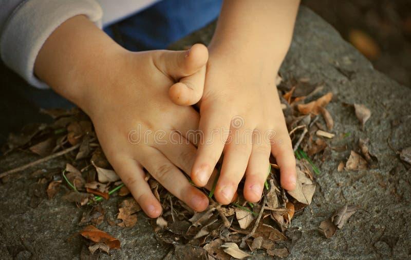 Manos y hojas del niño fotografía de archivo