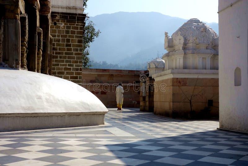 Manrov på templet royaltyfri fotografi