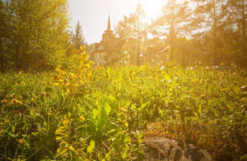 Mansão bonita no estilo antigo no castelo ensolarado da floresta em prados verdes no sol imagens de stock royalty free