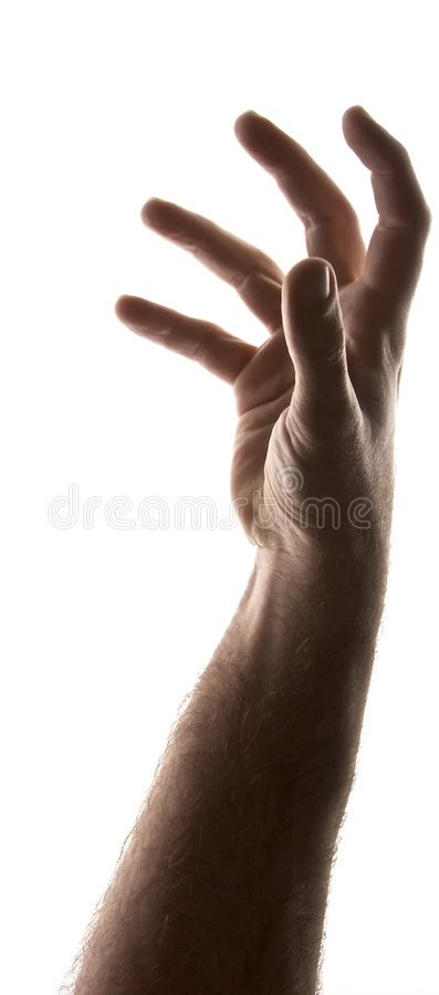 Mans arm royalty free stock photo