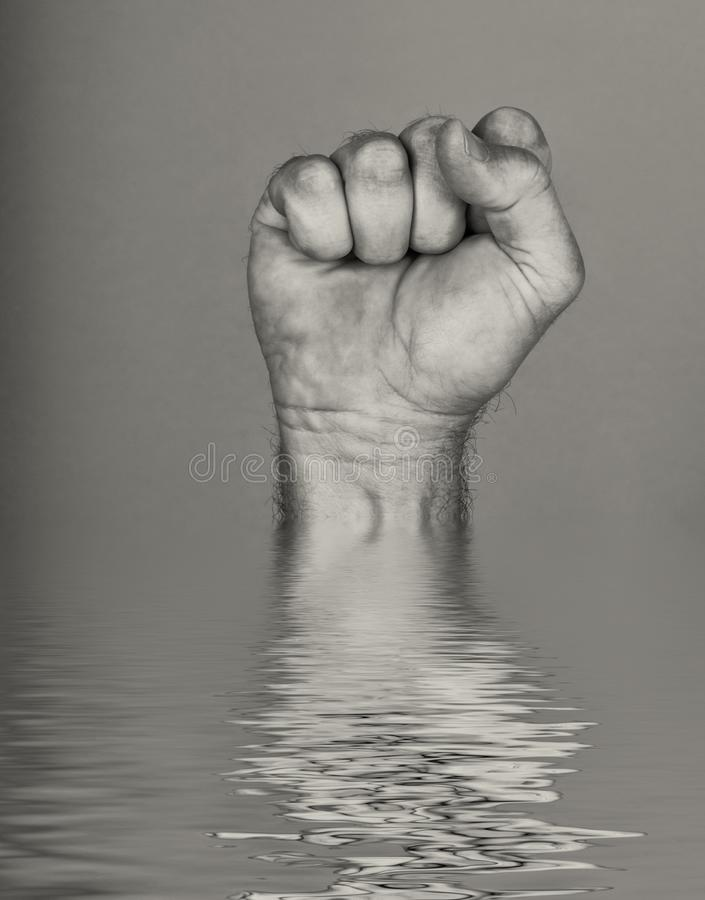 Fist out of The Water royalty free stock photo
