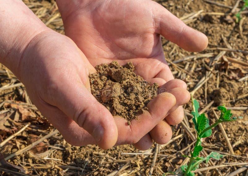 Mans händer som rymmer jord i vårfält close upp arkivfoton